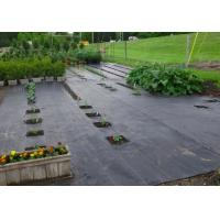 Buy cheap 100% Polypropylene Agriculture Non Woven Fabric Weed Control Ground Cover Net Mesh Cloth from wholesalers