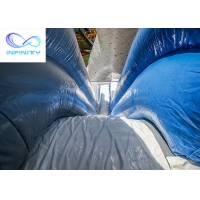 Buy cheap 11x6.3x6m Giant Polar Bear Water Slide Polar Plunge Inflatable Pool Water Slide for sale from wholesalers