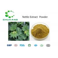 Buy cheap 100% Natural Nettle Root Extract Medicinal Herbs Nettle Root Extract from wholesalers