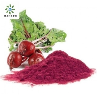 Buy cheap Pharma Grade Red Beet Root Powder For Beverage Additives product