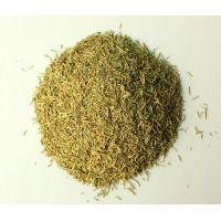 Buy cheap Rosemary leaf from wholesalers