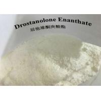 Buy cheap 99% Purity Anabolic Steroid Powder Drostanolone Enanthate Raw Steroids CAS 13425-31-5 from wholesalers