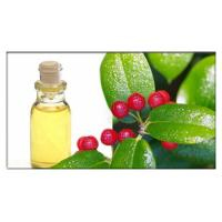 Buy cheap Wintergreen oil for pain relief, Wintergreen Oil in Aromatherapy for Natural and Homeopathic Remedies from wholesalers