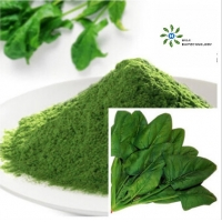 Buy cheap Green Organic Spinach Powder FDA Certified Vegetable Extract Powder product