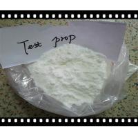 Pharmaceutical GMP Grade Testosterone Phenylpropionate CAS 1255-49-8