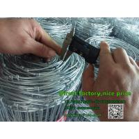 Buy cheap high quality zinc coated  Fencing, Field Fence, Horse Fence, Welded Wire, Barbed wire fencing FOR SALE from wholesalers