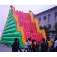 Buy cheap Inflatable Amusement Park With Red And Green Rock Climbing Wall , Ladder Step from wholesalers