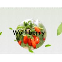 Buy cheap Dried fruit :Goji berry(wolfberry) 280 grain,350grain and 550Grain from wholesalers