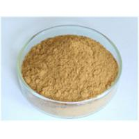 Buy cheap Astragalus Root Extract protect liver Manufacturer from wholesalers