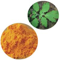 Buy cheap ISO Passed Macleaya Cordata Powder Natural Plant Extracts 60% Sanguinarine from wholesalers