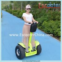 Buy cheap Wholesale two wheel self balance electric chariot with two modes and LED light from wholesalers