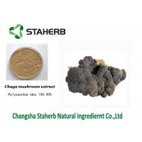 Buy cheap Anti-Tumor Chage extract Male Enhancement Powder Mushroom Extract Powder from wholesalers