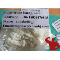 Anabolic Steroid Testosterone Isocaproate Strongest Testosterone Steroid For Muscle Building 15262-86-9