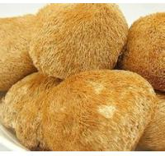 Buy cheap Lions mane mushroom extract 20%,4:1  Stimulated nerve,myelination and animal nerve system from wholesalers
