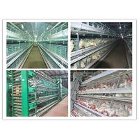 Buy cheap Poultry Farming Equipment For Layer, Broiler and Baby Chicks Battery Chicken Cage from wholesalers