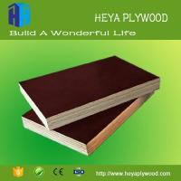 Buy cheap Qatar market plywood price 6mm - 28 mm resin coated plywood suppliers from wholesalers