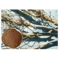 Buy cheap Apple Tree Root Pure Natural Plant Extracts , Extraction Of Medicinal Plants CAS 60 82 3 from wholesalers