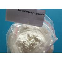 Buy cheap Effective Anabolic Steroids 99% Testosterone propionate for Muscle Growth 57-85-2 from wholesalers