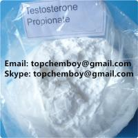 Buy cheap Ester Based Test Prop Steroid Muscle Building Powder Bulking Cycle CAS 57 85 2 from wholesalers