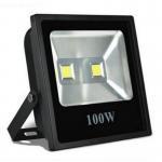 Buy cheap IP66 COB LED Garden Light Fixtures 100W Luminous Efficiency Light Control from wholesalers