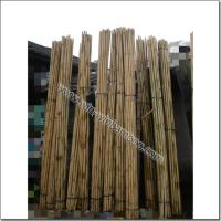 Buy cheap Nice color treated long durable bamboo canes with good quality from wholesalers
