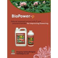 BioPower-P Liquid Seaweed Compound Fertilizer