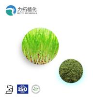 Buy cheap 100% Natural Wheat Grass Powder / Organic Plant Protein Powder Keep Health from wholesalers