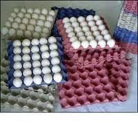 Buy cheap Coal Roller Pulp Molding Machine , Paper Egg Tray Making Machine 2000pcs/h from wholesalers
