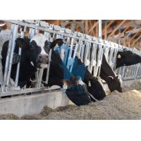 Buy cheap Carton Steel Locking Feed Barriers , Adjustable Metal Cattle Feeding Gates from wholesalers