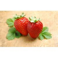Buy cheap Fruitage cCherry / Star Fruit 3D Lenticular Postcards CMYK Printing product