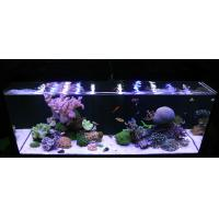 Buy cheap remote controlled LED reef Light for saltwater from wholesalers