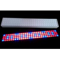 Buy cheap 50 W SMD LED Tube Grow Lights 900mm Length With 50~60Hz Frequency product
