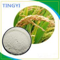 Buy cheap CAS 100403-19-8 rice bran extract powder for Anti - Aging / Skin Care from wholesalers