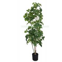 Buy cheap Artificial Polyscias Balfouriana,With A Pot,For Interior Decor,150CM,PC140-4 from wholesalers