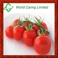 Buy cheap High quality Natural Tomato extract 95% lycopene for anti-oxidation from wholesalers