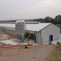Buy cheap Steel Poultry House (PS-002) from wholesalers
