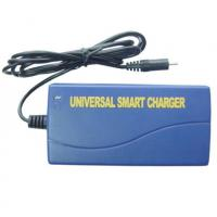 Buy cheap Universal Smart NIMH NICD Battery Charger , DC 12 Volt For Power Tool from wholesalers