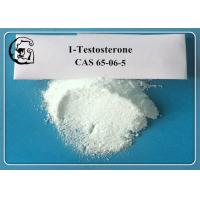 Buy cheap White Powder Testosterone Anabolic Steroid 1-Testosterone CAS 65-06-5 from wholesalers