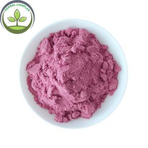 China Hot Sale Poland Aronia Berry Powder / Aronia Powder on sale