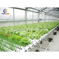 Buy cheap NFT Hydroponic Gardening System for Strawberry & Lettuce Growing from wholesalers