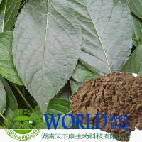 Buy cheap eucommia leaf extract, 20% chlorogenic acid powder, eucommia chlorogenic acid 20% from wholesalers