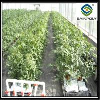 Buy cheap High Elasticity Polyethylene Film Greenhouse For Vegetables And Plants from wholesalers