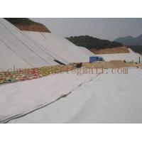 Buy cheap PP/PET needle punched geotextile from wholesalers