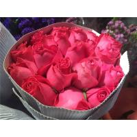 Buy cheap Fresh cutting flower rose 80cm stem length deep Red color Rose for festival decoration gifts from wholesalers