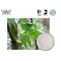 Buy cheap Herbal Medicine Pure Stevia Extract Powder , Rubus Suavissimus Organic Stevia Extract from wholesalers