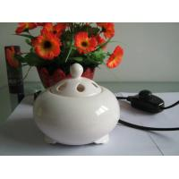 Quality factory wholesale ceramic electric aroma burner warmer Language Option  French for sale