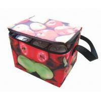 Custom full color logo 6 pack cooler bag
