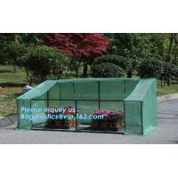 China agricultural cheap green house,home garden green house, small garden house,durable waterproof aluminium winter garden on sale
