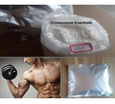 Oral Steroids Bodybuilding 86