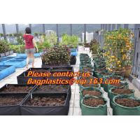 Buy cheap vegetables, fruits, seeds, bedding plants, tomatoes, peppers, cucumbers, tree starters from wholesalers